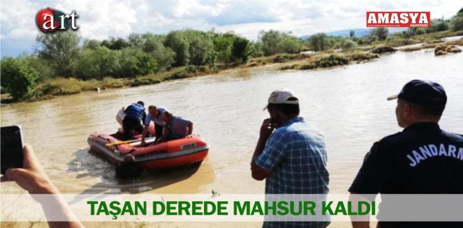 TAŞAN DEREDE MAHSUR KALDI