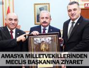 AMASYA MİLLETVEKİLLERİNDEN MECLİS BAŞKANINA ZİYARET