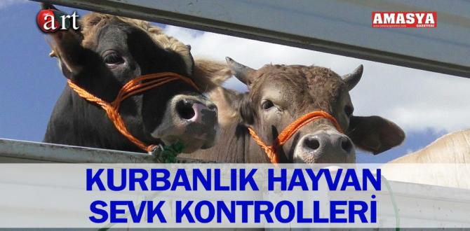 KURBANLIK HAYVAN SEVK KONTROLLERİ