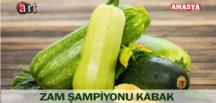 ZAM ŞAMPİYONU KABAK