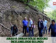 Amasya Orman Bölge Müdürü  İncelemelerde bulundu