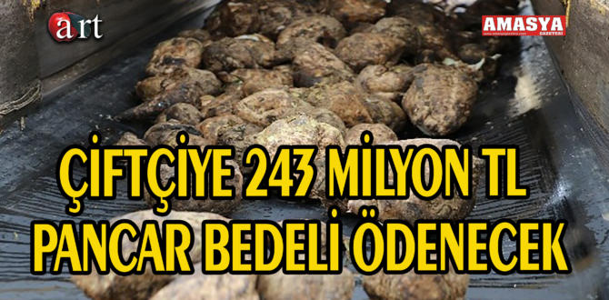 ÇİFTÇİYE 243 MİLYON TL PANCAR BEDELİ ÖDENECEK