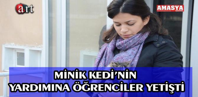 Minik Kedi'nin Yardımına Öğrenciler Yetişti