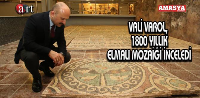 VALİ VAROL, 1800 YILLIK ELMALI MOZAİĞİ İNCELEDİ