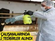 SAHA ÇALIŞMALARINDA GEREKLİ TEDBİRLER ALINDI