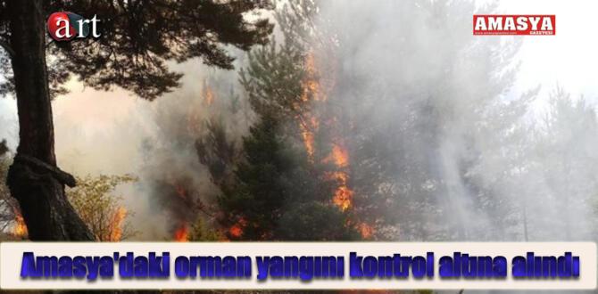Amasya'daki orman yangını kontrol altına alındı