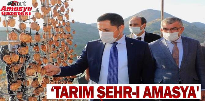 'Tarım Şehr-i Amasya'