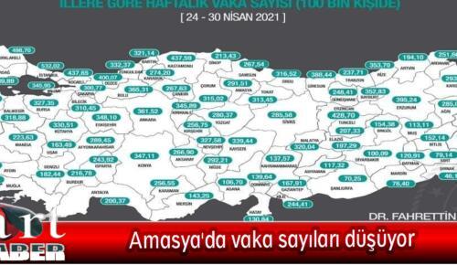 Amasya'da vaka sayıları düşüyor